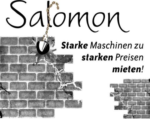 Salomon Abbruch, Winterdienst, Erdbewegung